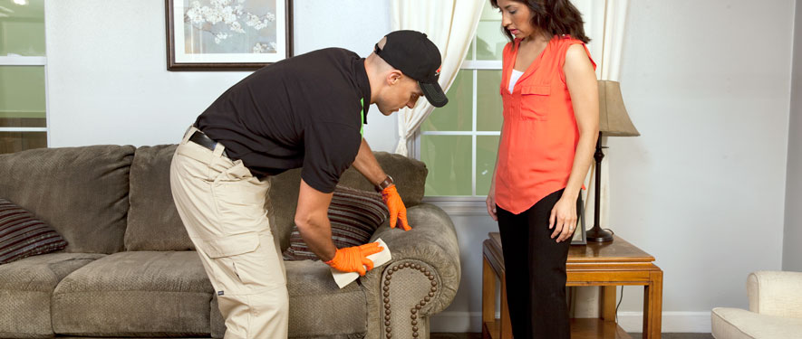 Miami, FL carpet upholstery cleaning